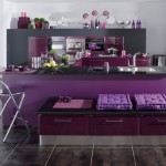 Purple Contemporary Kitchen