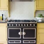 Mustard Kitchen Cupboards