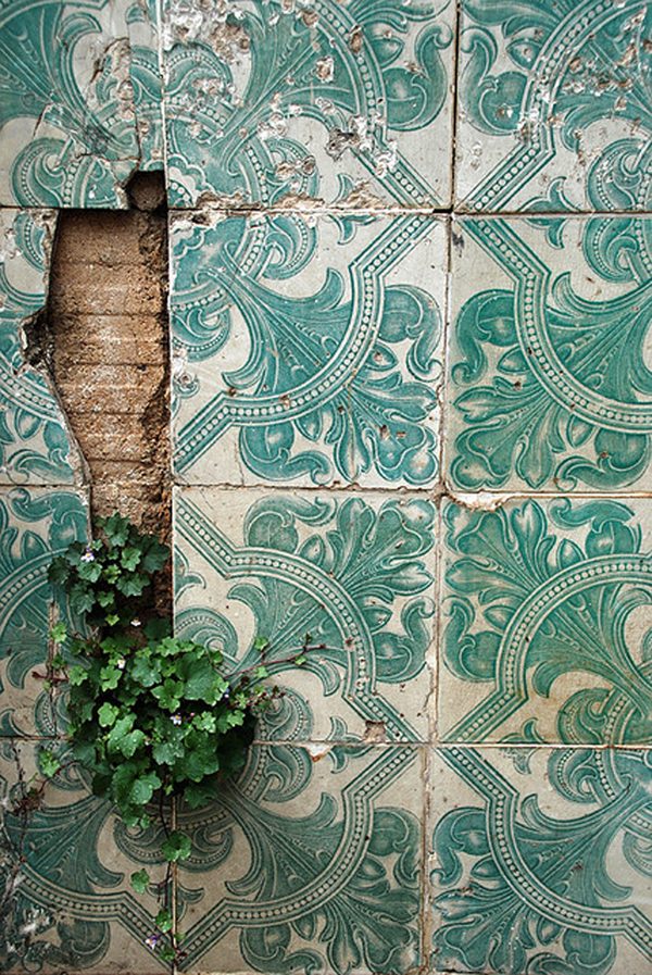 Vintage decorative tiles with nature coming through
