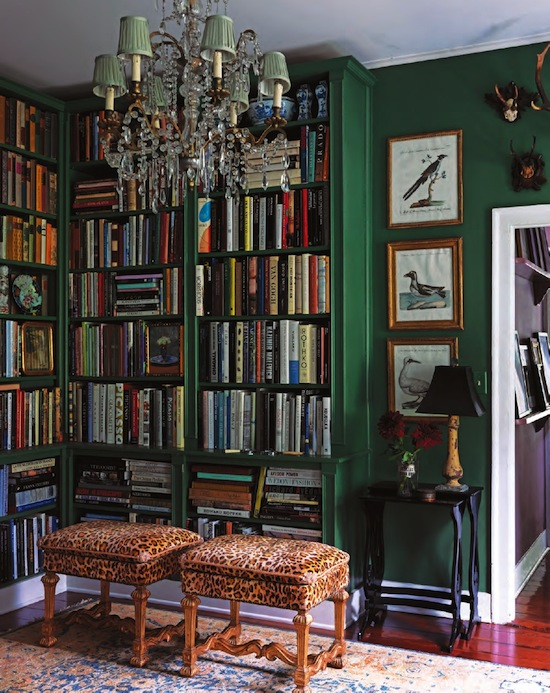 emerald-green-and-leopard library