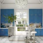 Cobalt Blue Cabinets