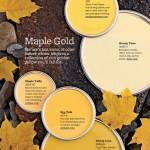 Maple Gold Paint Colors