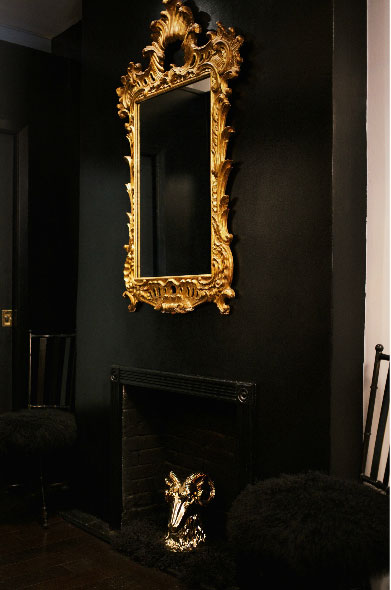 Black Fireplace Interiors By Color