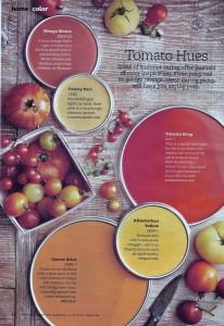 Tomato Hues Paint Colors