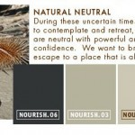 Natrul Neutral Greys Paint Palette