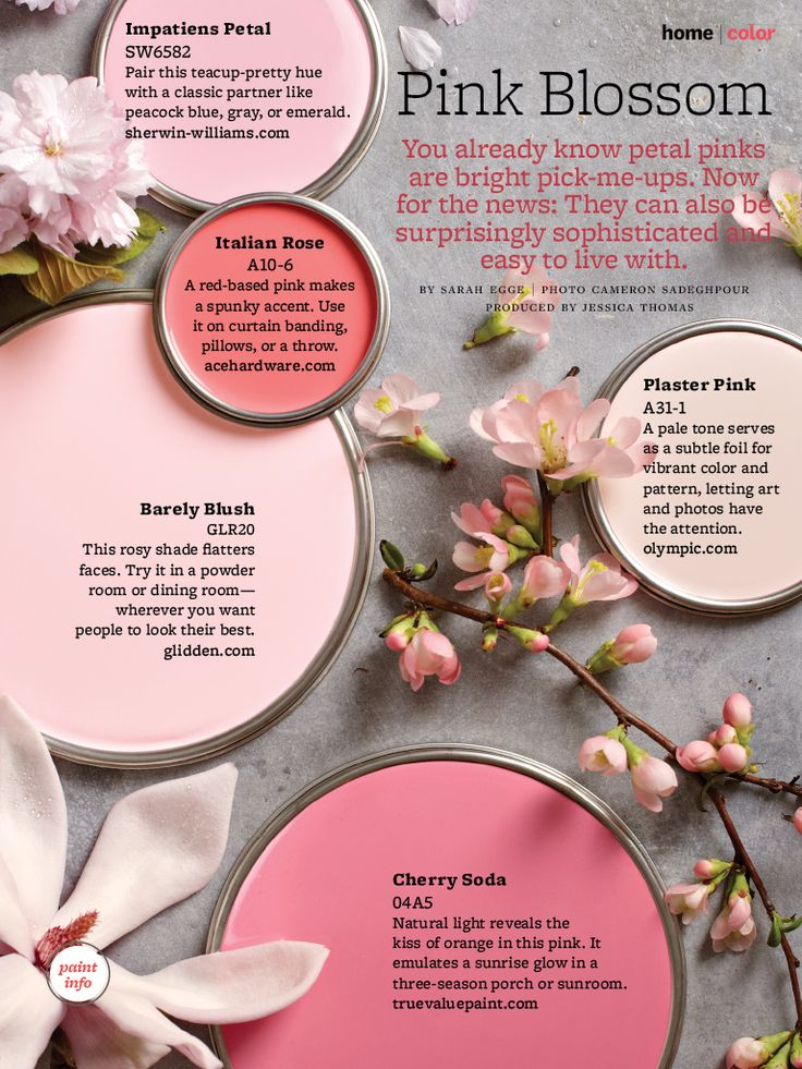 Paint Palette Pink Blossom Interiors By Color