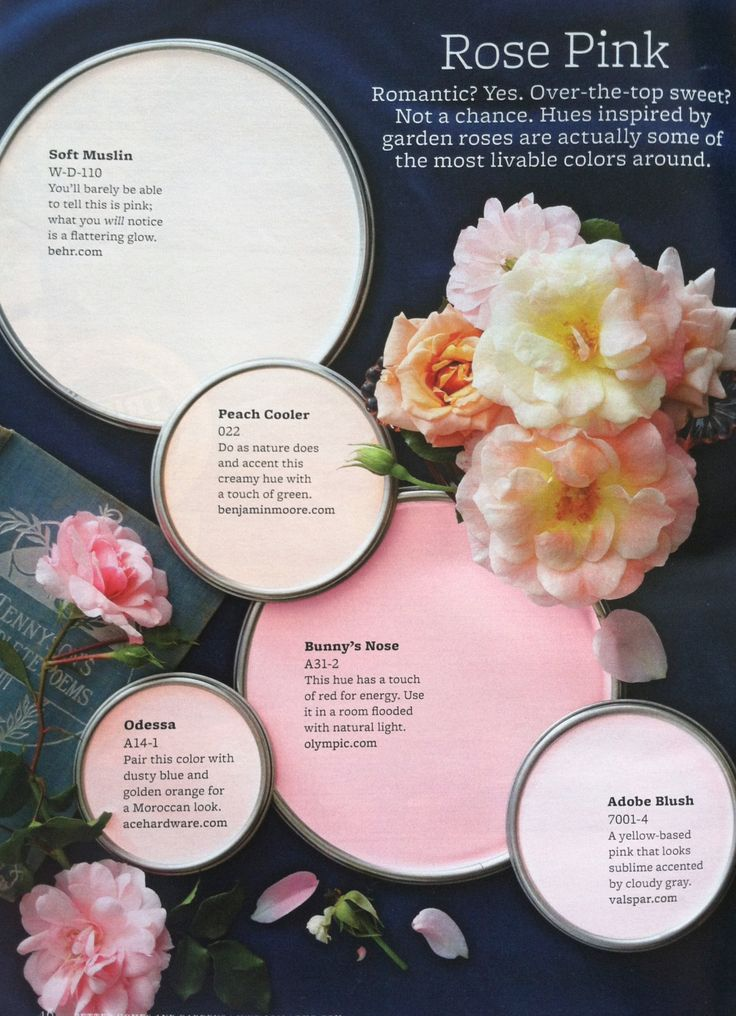 Paint Palette - rose pink