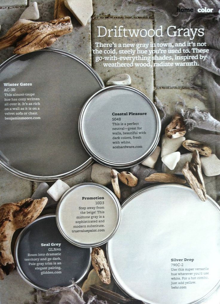 Paint palette driftwood grays interiors by color for Paint color palette