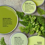 Paint Palette - Fern Greens