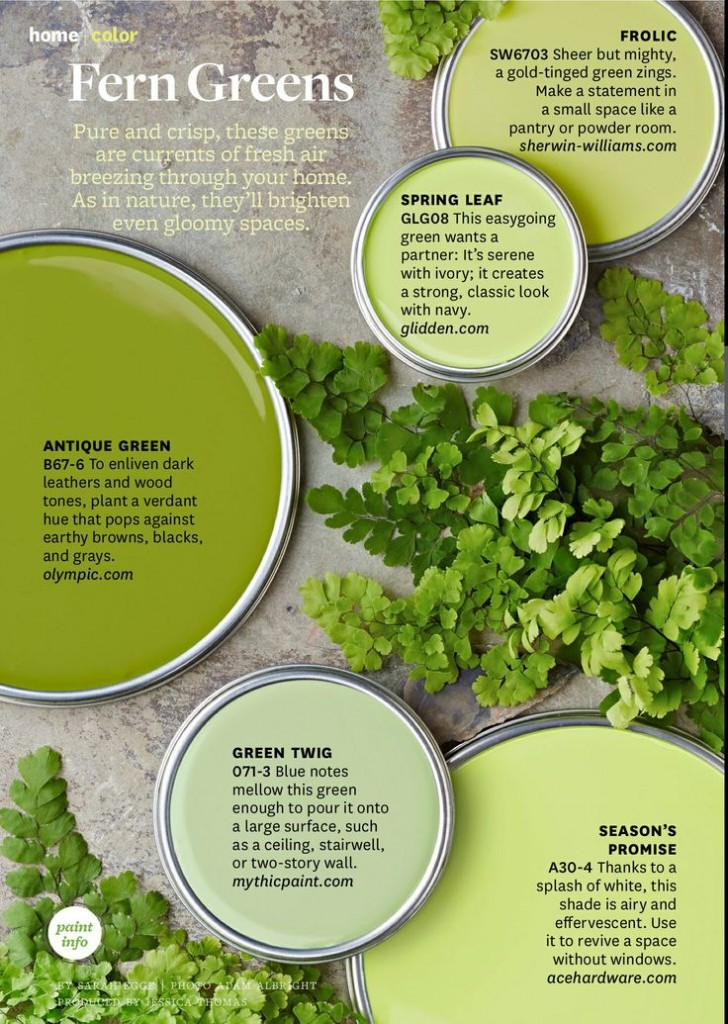Paint Palette Fern Greens Pure And Crisp Green Colors
