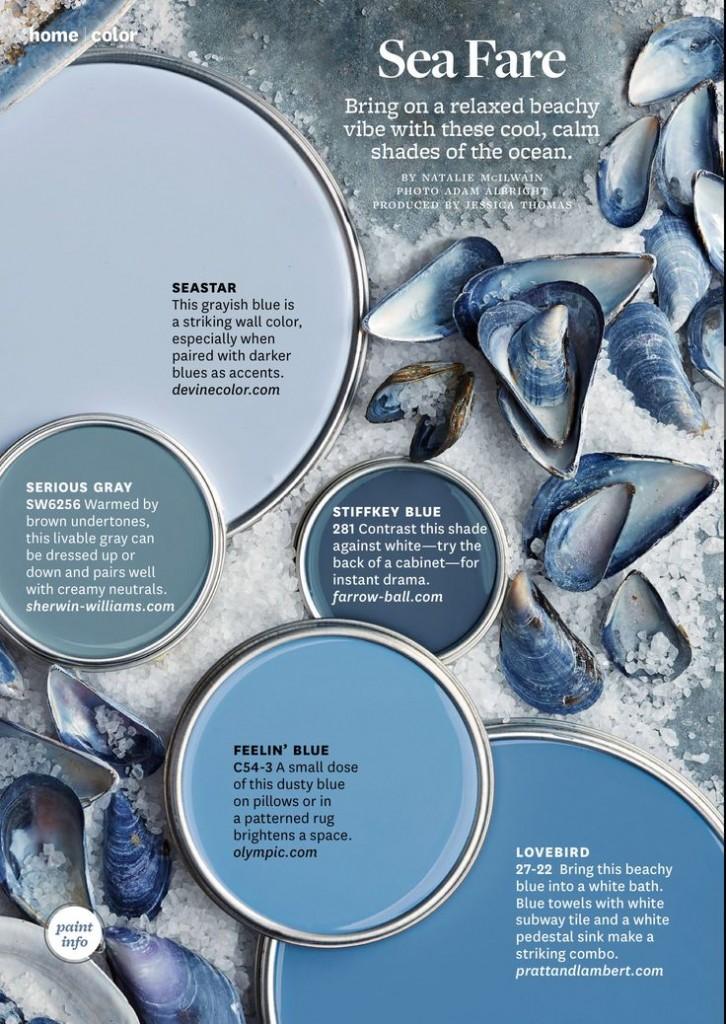 Blue Paint Color Palettes Interiors By Color 8 Interior