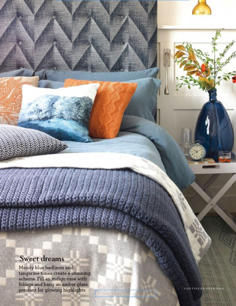 Blue and Orange Country Bedroom