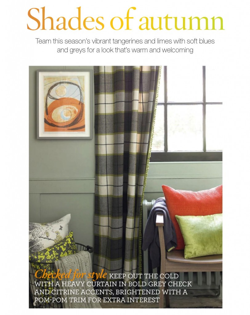 Checked Curtain