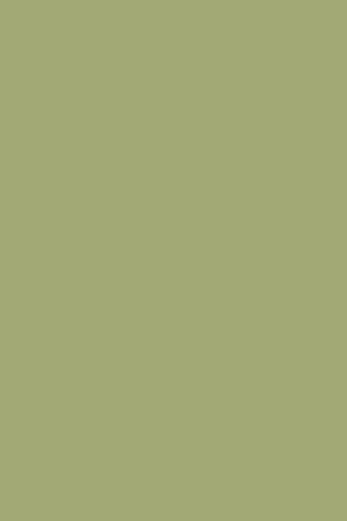 Farrow Amp Ball Saxon Green Interiors By Color 6 Interior