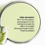 Tree-Whimsey-by-Pratt-&-Lambert