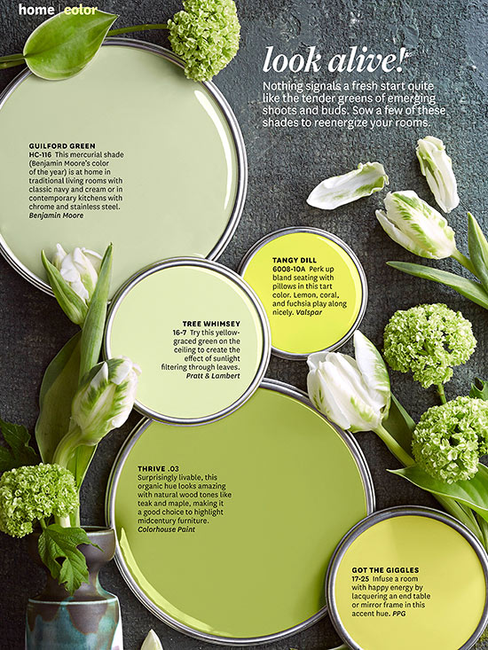 Better Homes And Gardens April 2014 Paint Palette Green