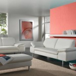 Accent Wall in Coral