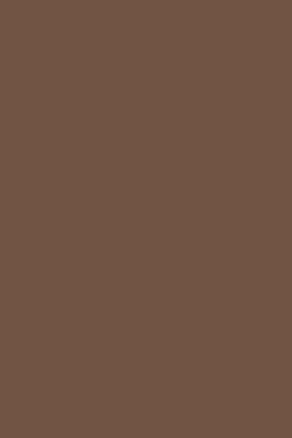 Brown Paints Interiors By Color