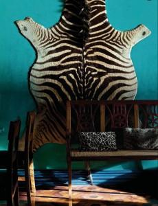 Zebra Rug on Turquoise Wall