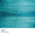 Aquarius by Sherwin-Williams