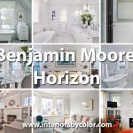 Benjamin Moore Horizon paint color