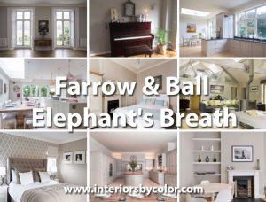 Farrow & Ball Elephant's Breath