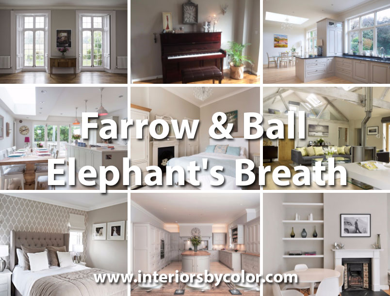 Farrow & Ball Elephant's Breath - Interiors By Color