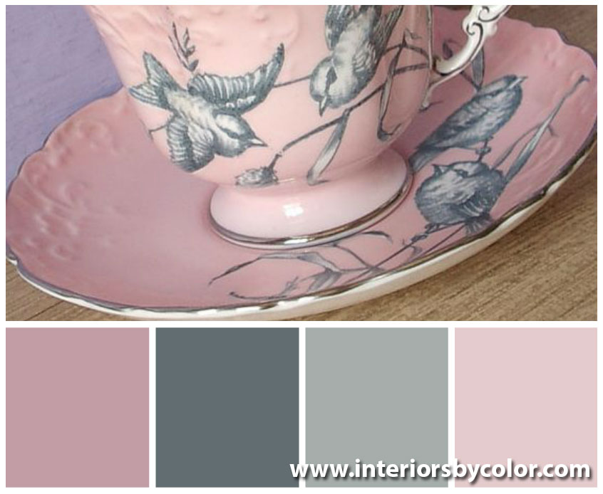 Pink and Gray Color Palettes