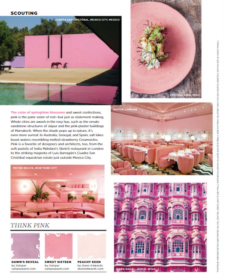 Pink Paint Color Scheme 2017