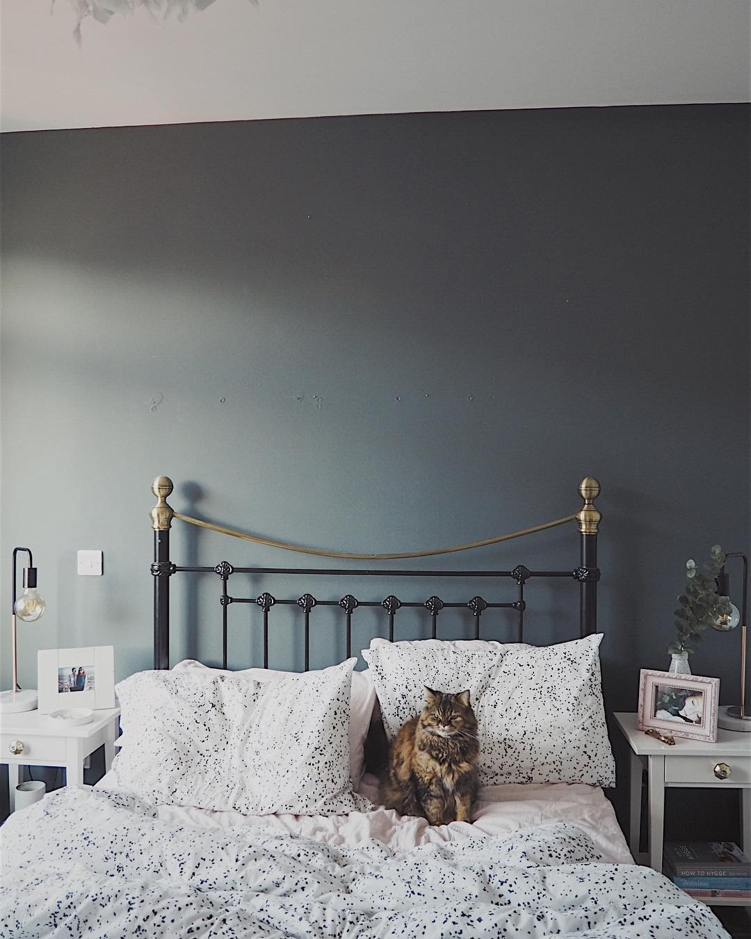 Farrow And Ball Downpipe Bedroom Walls