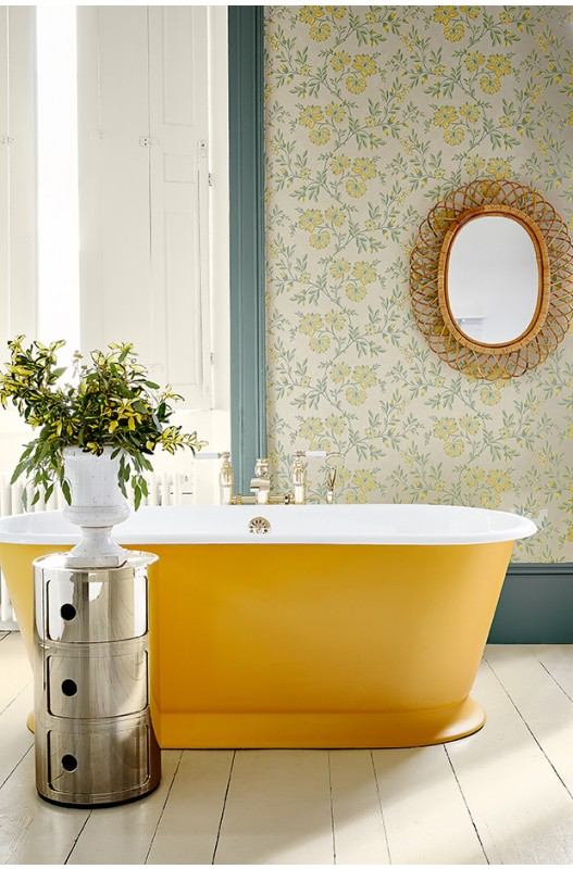 Little Greene Mister David painted bath