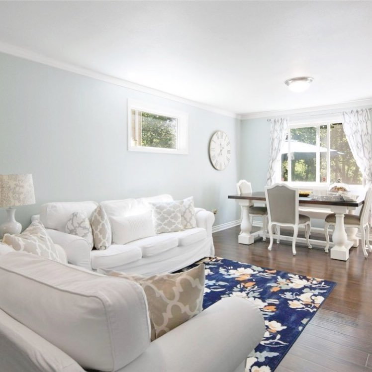 Sherwin Williams Sea Salt Paint Color Schemes for Living Room Walls