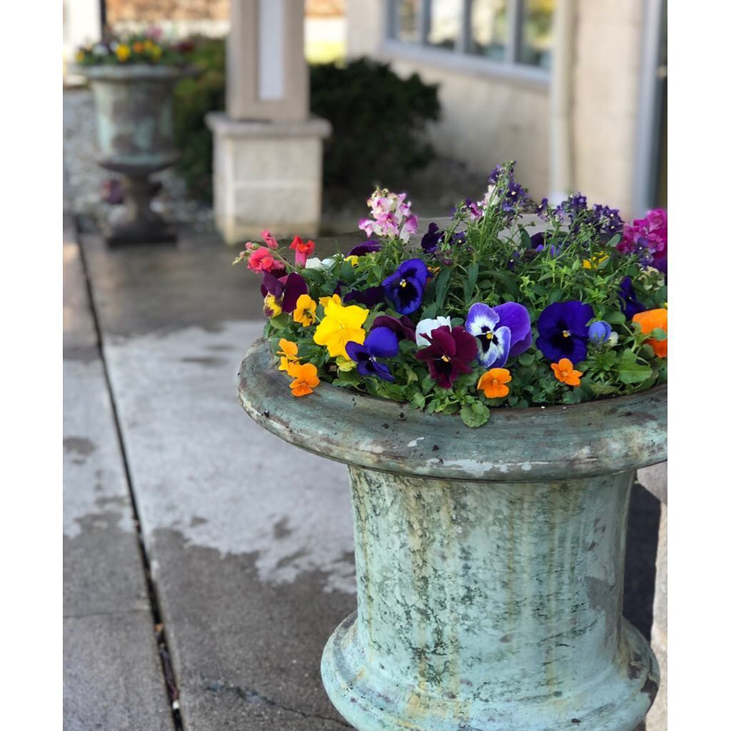 Colorful flower pot ideas.