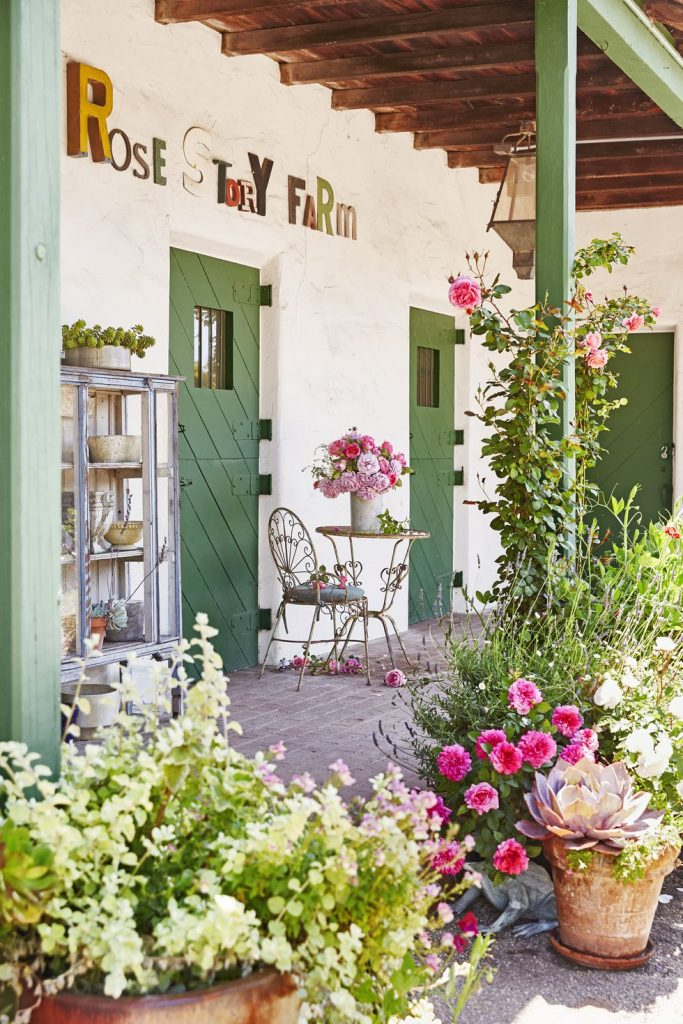 Patio backyard with planters and potting
