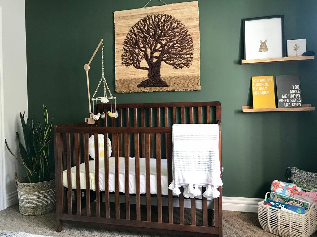 Benjamin Moore Backwoods green baby nursery