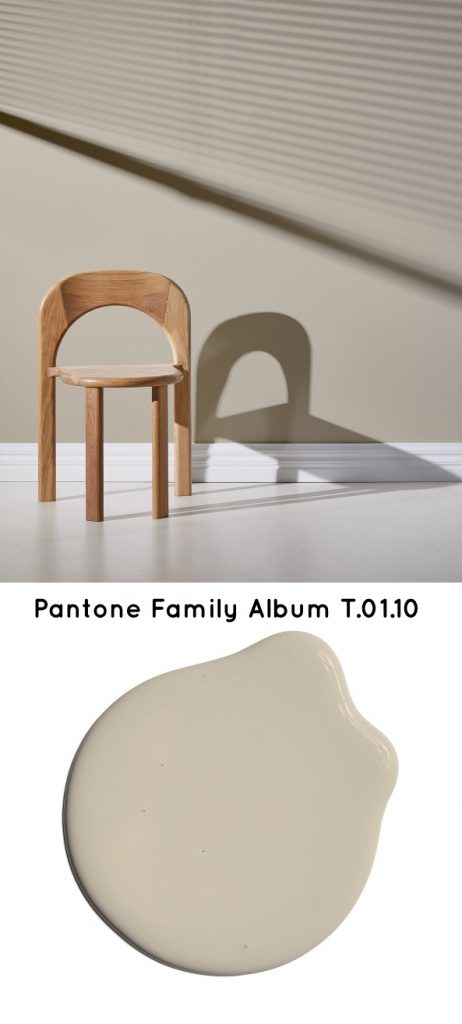 Pantone Family Album T.01.10 Neutral paint color 2020