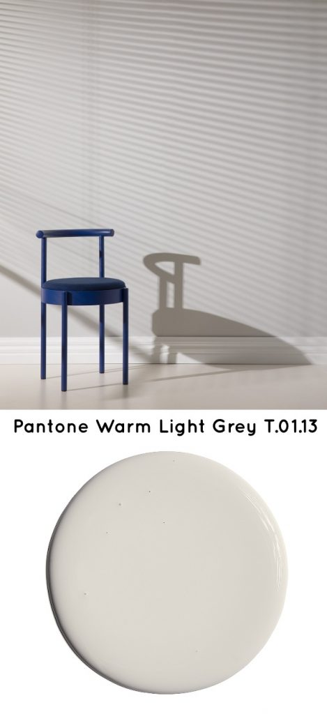 Pantone Warm Light Grey T.01.13 Neutral paint color 2020