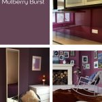 Mulberry Burst by Dulux