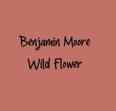 Benjamin Moore Wild Flower