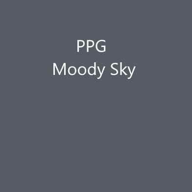 PPG Moody Sky